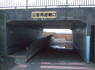 20090323逗子16