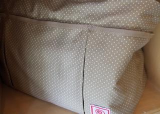 20090331キャリーバッグ2