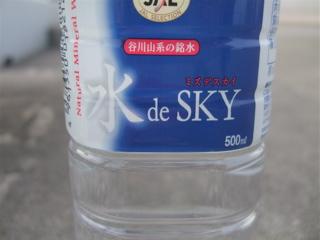 20090511羽田空港22