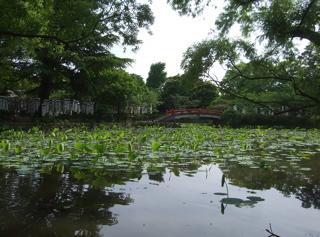 20090518鎌倉4
