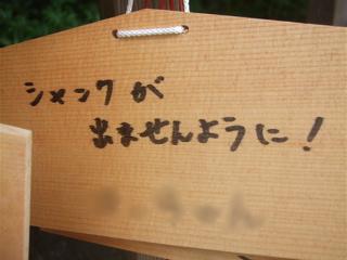 20090518鎌倉15