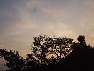 20081020鎌倉12