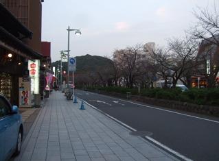 20081020鎌倉18