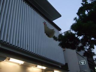 20081020鎌倉27
