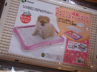 20090522 オレンジエックス ユーカヌバ ウォーターノズル ビターアップル トイレトレー 入荷!! 6