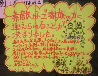 20090524おめでとう1