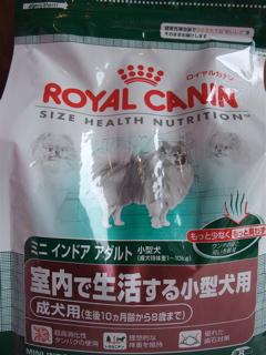 20090630 チーズ ひとくちオードブル オレンジX ユーカヌバ ロイヤルカナン フレキシリード 4