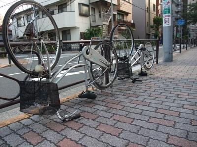 20090901 ビションフリーゼ フントヒュッテ おさんぽ 裏道 探検 11