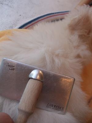 ビションフリーゼ フントヒュッテ hundehutte スリッカーブラシ ブラッシング コーミング コーム 日頃のケア こいぬ 仔犬 子犬 11