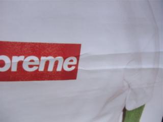 シュプリーム Supreme ポスター カーミット セサミストリート フントヒュッテ hundehutte トリミングサロン 東京 文京区 2