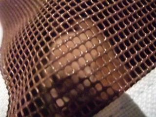 チワワ こいぬ情報 子犬情報 仔犬情報 フントヒュッテ hundehutte トリミングサロン 東京 文京区 キャリーバッグ 2