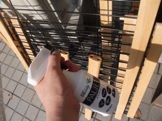 ビションフリーゼ フントヒュッテ hundehutte 東京 文京区 トリミングサロン トリミング ビションカット こいぬ情報 仔犬情報 子犬情報 アイリスオーヤマ 3