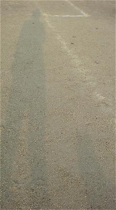 荒川の土手 おさんぽ 犬 いぬ ドッグ dog フントヒュッテ hundehutte 東京 文京区 トリミングサロン こいぬ 子犬 仔犬 首輪 カラー ハーネス リード 6.jpg