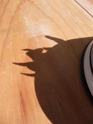 P-ball とりガムトサカ 鶏のトサカささみ巻き フントヒュッテ 東京 文京区 トリミングサロン こいぬ 子犬 わんちゃんのおやつ 犬のおやつ 国産 首輪 リード 5.jpg