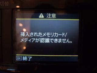 ビションフリーゼおんなのこおとこのここいぬ子犬赤ちゃんあかちゃん出産ブリーダー東京フントヒュッテ文京区トリミングサロンビションカットアフロカットSDカード2.jpg