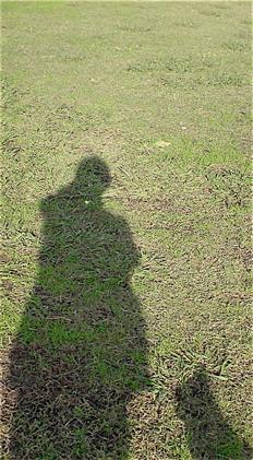 荒川の土手犬わんこおさんぽビションフリーゼブリーダー子犬東京フントヒュッテhundehutte文京区トリミングサロンビションカットアフロカット毛量の多いビション2.jpg