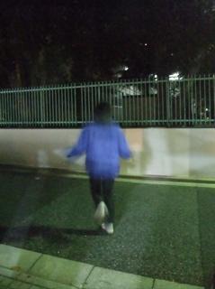 なわとび有酸素運動マラソンビションフリーゼブリーダー出産子犬東京フントヒュッテ文京区トリミングサロンビションカット安田美沙子はんな先輩犬泉サンゲツCM2.jpg