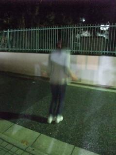 なわとび有酸素運動マラソンビションフリーゼブリーダー出産子犬東京フントヒュッテ文京区トリミングサロンビションカット安田美沙子はんな先輩犬泉サンゲツCM3.jpg