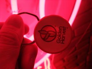 トリミングサロンBUBBLES下北沢バブルスDOGディーオージーHEARTYCAFEドッグカフェsoupspoonスープスプーンプードルドレッドヘアフントヒュッテビション東京17.jpg