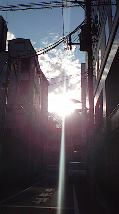 2011賀正初詣年賀状卯年うさぎ年パワースポットフントヒュッテビションフリーゼブリーダー東京アフロカット文京区トリミングビションカット安田美沙子はんな先輩1.jpg