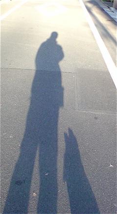 2011賀正初詣年賀状卯年うさぎ年パワースポットフントヒュッテビションフリーゼブリーダー東京アフロカット文京区トリミングビションカット安田美沙子はんな先輩2.jpg