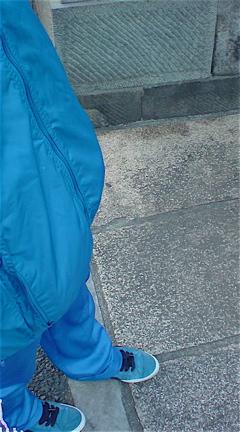 ブルーマンビションフリーゼブリーダー子犬こいぬ赤ちゃん出産東京フントヒュッテビションフリーゼ文京区トリミングサロンビションカット安田美沙子はんな先輩.jpg