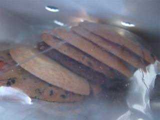 ステラおばさんのクッキーバレンタインフェアギフトプレゼントチョコレートフントヒュッテビションフリーゼブリーダー東京ビションカット文京区トリミング2.jpg