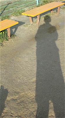 荒川の土手犬おさんぽケーズデンキ荒川区フントヒュッテオリジナルハーネスリード犬首輪東京ビションフリーゼブリーダービションカット文京区トリミング3.jpg