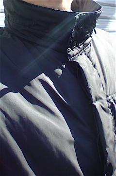 一周忌法要寂円寺文京区トリミングビションカットフントヒュッテ東京ビションフリーゼブリーダーフントヒュッテオリジナルハーネスカフェリードカラー犬首輪.jpg