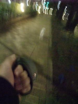 ビションフリーゼブリーダー東京フントヒュッテ犬グッズフレキシリード伸縮リードflexi伸縮自在のリード自由お散歩犬播磨坂文京区トリミングビションカット5.jpg