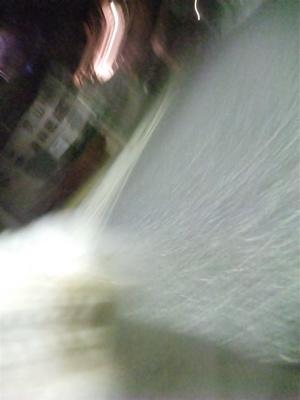 ビションフリーゼブリーダー東京フントヒュッテ犬グッズフレキシリード伸縮リードflexi伸縮自在のリード自由お散歩犬吉祥寺文京区トリミングビションカット3.jpg