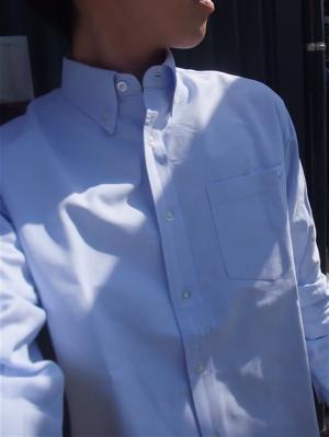 Modern AmusementカラスモダンアミューズメントシャツTMT BIGHOLIDAYスエードシューズフントヒュッテ東京ビションフリーゼビションカット文京区トリミングトリマー求人募集1.jpg
