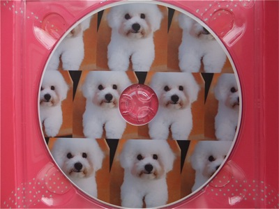 ビションフリーゼトリミング文京区ビションフリーゼカットフントヒュッテビションフリーゼ子犬情報東京hundehutteバースデープレゼントCDギフトケース8.jpg