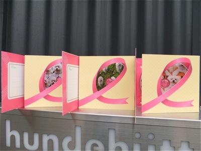 ビションフリーゼトリミング文京区ビションフリーゼカットフントヒュッテビションフリーゼ子犬情報東京hundehutteバースデープレゼントCDギフトケース11.jpg