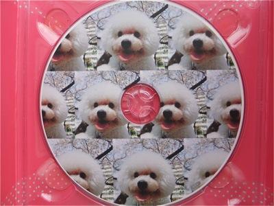 ビションフリーゼトリミング文京区ビションフリーゼカットフントヒュッテビションフリーゼ子犬情報東京hundehutteバースデープレゼントCDギフトケース16.jpg
