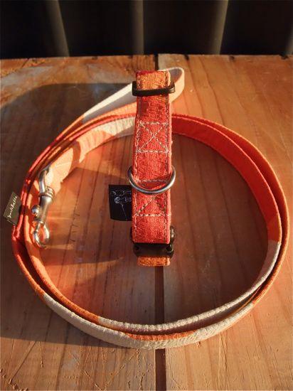 orangeSMAPオレンジフントヒュッテオリジナルリードハーネスカラー首輪犬グッズhundehutte東京ビションフリーゼこいぬ文京区トリミングビションフリーゼカット550-1.jpg
