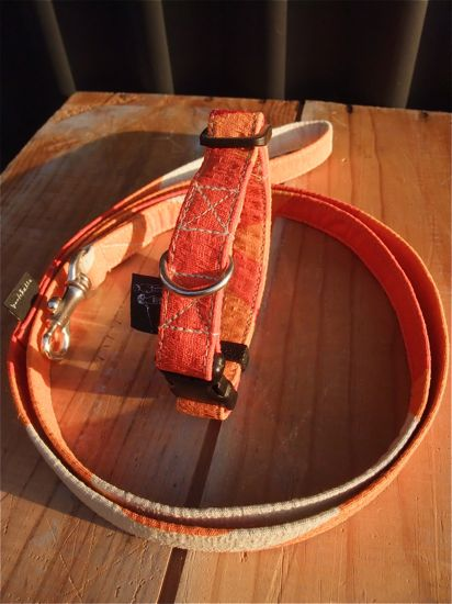 orangeSMAPオレンジフントヒュッテオリジナルリードハーネスカラー首輪犬グッズhundehutte東京ビションフリーゼこいぬ文京区トリミングビションフリーゼカット550-3.jpg