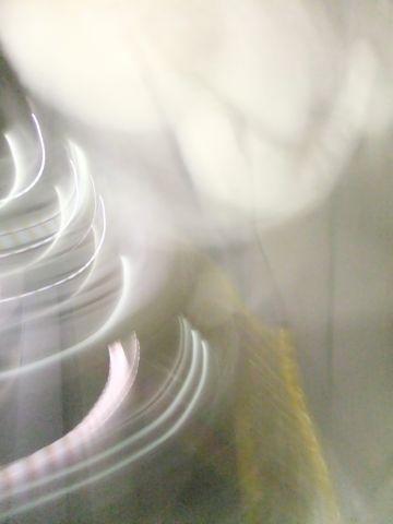 犬おあずかり犬ホテル東京ペットホテル文京区フントヒュッテビションフリーゼ東京ビションフリーゼトリミング文京区ビションフリーゼカット8.jpg