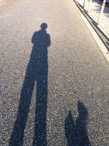 犬おさんぽ愛犬家族いつも一緒わんちゃんわんこフントヒュッテ文京区トリミングビションフリーゼこいぬ情報東京hundehutte犬を迎える犬を飼う犬と暮らす犬と生活犬との生活2.jpg