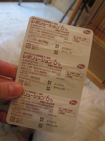 ビションフリーゼフントヒュッテ東京ビションフリーゼ子犬ビション赤ちゃんhundehutteビションこいぬ混合ワクチン接種レボリューション6ノミダニフィラリア予防薬a.jpg