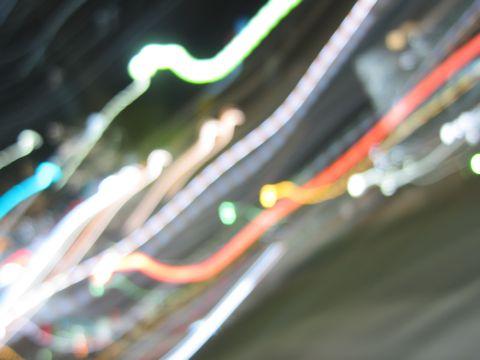 ビションフリーゼフントヒュッテ東京ビションフリーゼ子犬情報ビションフリーゼ赤ちゃんhundehutte文京区ビションフリーゼおんなのこビションフリーゼおとこのこc.jpg