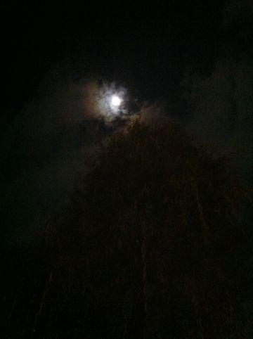 皆既月食2011年12月10日かいきげっしょく月食とは地球が太陽と月の間に入り地球の影が月にかかることによって月が欠けて見える現象皆既月食画像皆既月食撮影皆既月食時間8.jpg