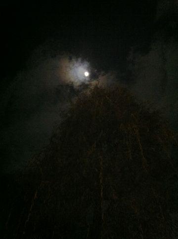皆既月食2011年12月10日かいきげっしょく月食とは地球が太陽と月の間に入り地球の影が月にかかることによって月が欠けて見える現象皆既月食画像皆既月食撮影皆既月食時間9.jpg