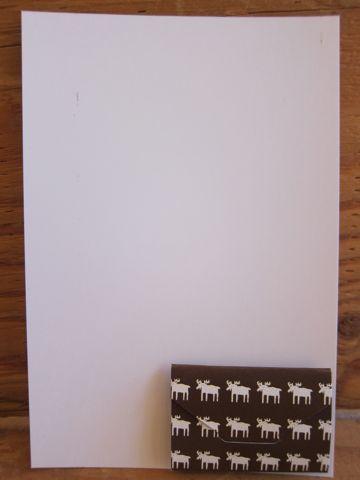 トイ・プードルトリミング文京区フントヒュッテ東京ナノオゾンペットシャワー使用店ハーブパック犬歯磨きhundehutteトイプーカットバースデー割引b.jpg