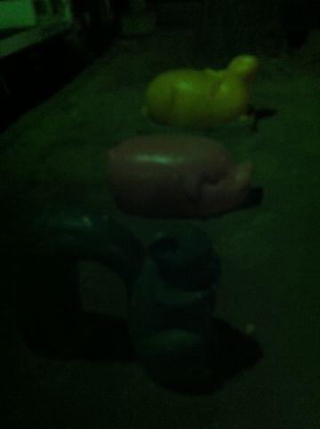 犬おさんぽ公園わんこ犬フントヒュッテ文京区トリミングナノオゾンペットシャワー使用店東京hundehutte犬おさんぽフントヒュッテオリジナル首輪リードハーネス5.jpg