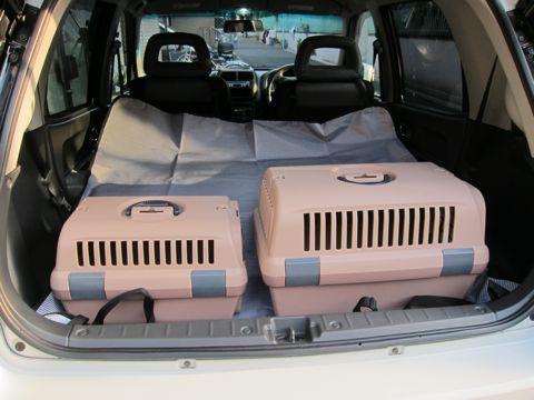 リッチェルキャンピングキャリーお外でキャリーお家でハウスバリケンネルエアトラベルキャリーペットボイジャー犬送迎トリミング文京区フントヒュッテhundehutte4.jpg