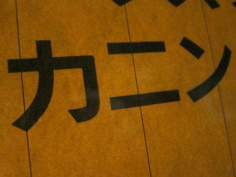 ダックスフントカニンヘンダックスカニヘンダックスチョコタンダックスhundehutte文京区フントヒュッテビションフリーゼこいぬプードル小さいプードル東京1.jpg