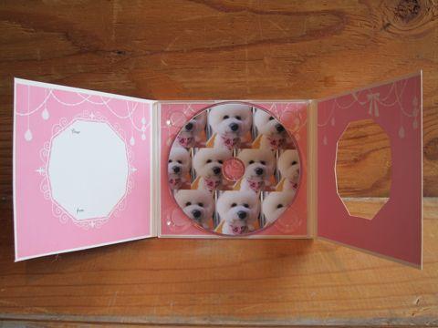 ビションフリーゼフントヒュッテ東京ビションカットhundehutte文京区トリミングナノオゾンペットシャワー使用店東京ビションのカットのできるお店犬ハーブパックp.jpg