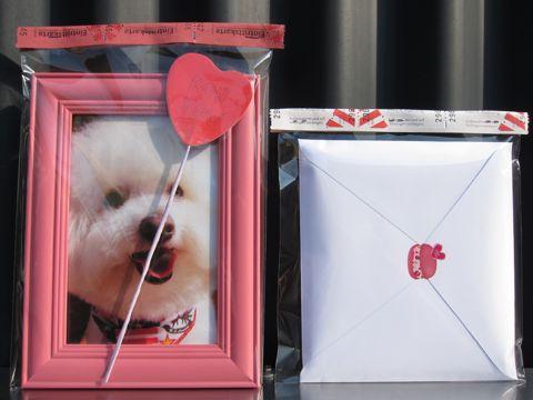 ビションフリーゼフントヒュッテ文京区トリミングナノオゾンペットシャワー使用店東京ビションフリーゼのカットのできるお店犬お誕生日バースデー割引hundehutteo.jpg