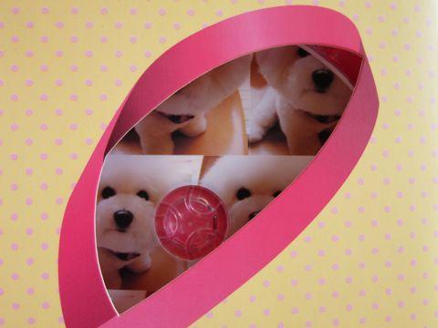 ビションフリーゼトリミング文京区フントヒュッテ東京ナノオゾンペットシャワー使用店駒込hundehutteビションフリーゼのカットのできるお店犬ハーブパック14.jpg